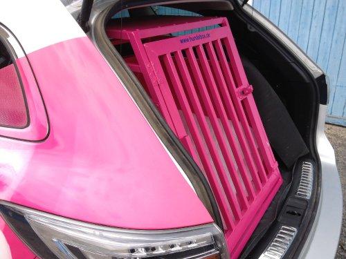 Mazda 6 passend zum Firmenlogo Farbe telemangenta