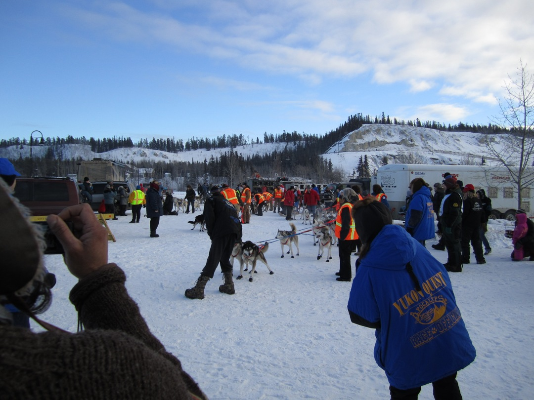 Start des Yukon Quest 2011